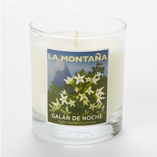 Jasmine candle for Galan de noche conforama