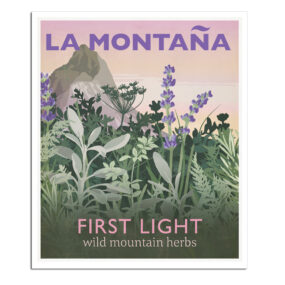 First Light poster